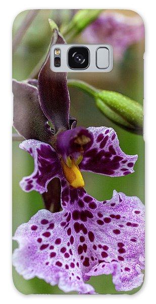 Orchid - Caucaea Rhodosticta Galaxy Case