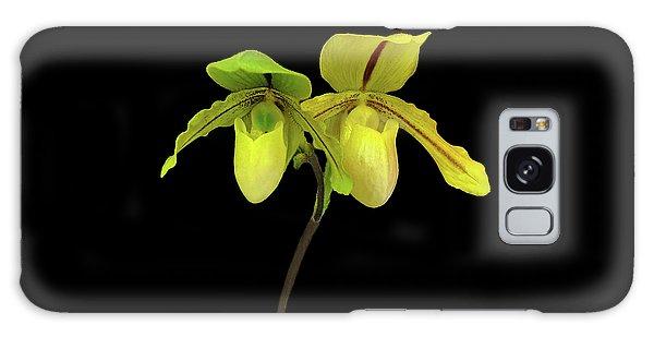 Orchid Paphiopedilum Druid Spring Galaxy Case