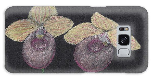 Orchid-paphiopedilum Fanaticum Galaxy Case