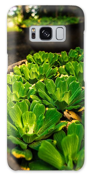 Orchid Pond Galaxy Case