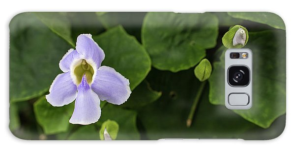 Orchids  Galaxy Case by Jingjits Photography