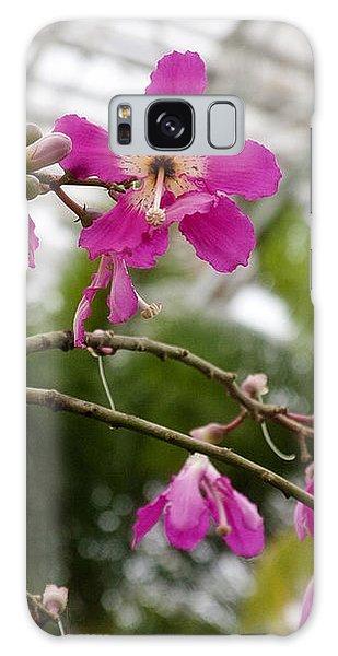 Orchids Myriad Botanical Gardens Okc Galaxy Case