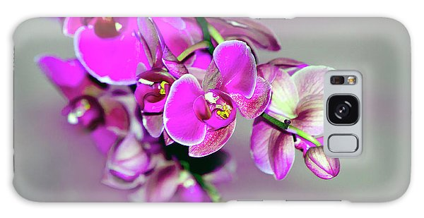 Orchids On Gray Galaxy Case by Ann Bridges