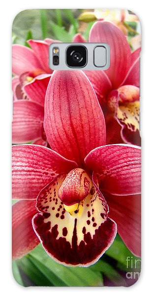 Orchids Up Close Galaxy Case