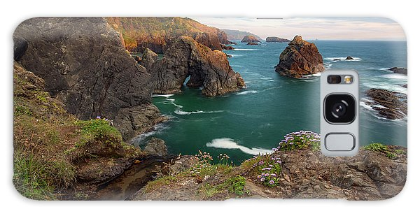 Oregon Coastal Scenic Galaxy Case by Leland D Howard
