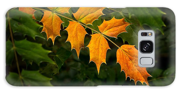 Oregon Grape Autumn Galaxy Case