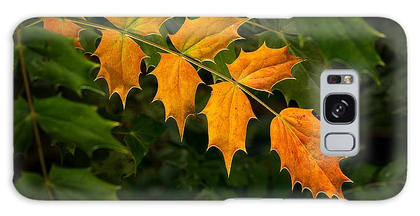 Oregon Grape Autumn Galaxy Case