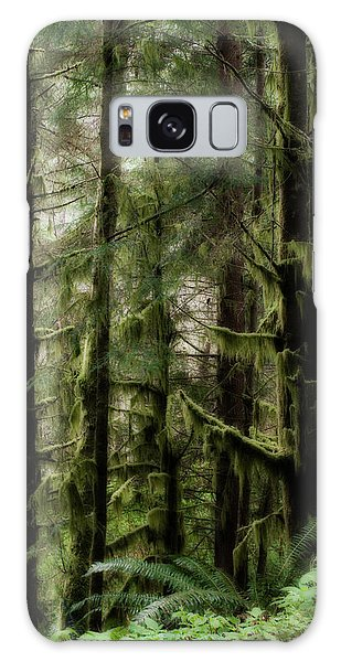 Oregon Old Growth Coastal Forest Galaxy Case