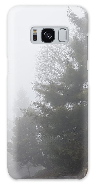 Oregon Winter Galaxy Case