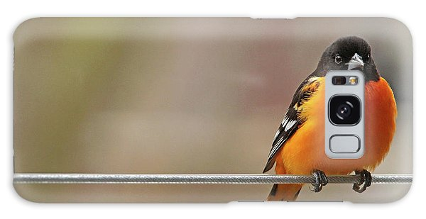 Oriole On The Line Galaxy Case