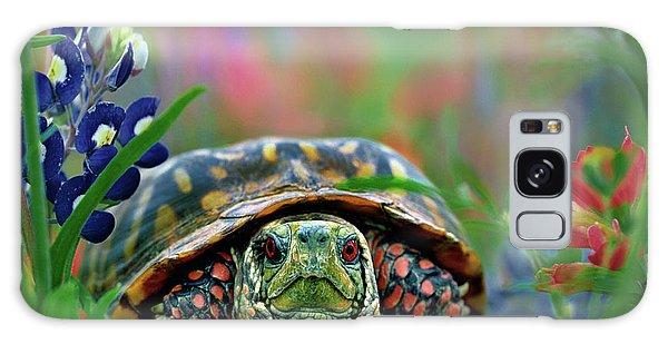 Ornate Box Turtle Galaxy Case