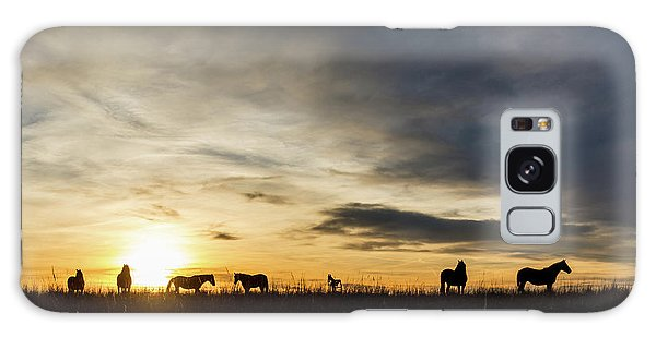 Osage Horses Galaxy Case