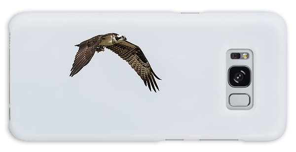Osprey 2017-2 Galaxy Case by Thomas Young