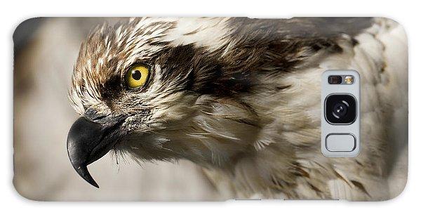Osprey Galaxy Case - Osprey by Adam Romanowicz