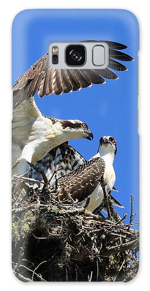Osprey Chicks Ready To Fledge Galaxy Case