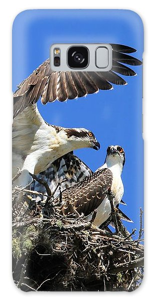 Osprey Chicks Ready To Fledge Galaxy Case