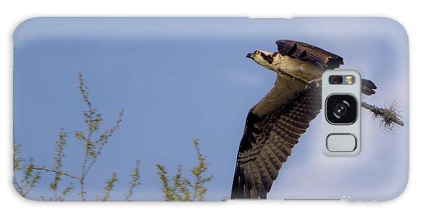 Osprey Collecting Sticks Galaxy Case