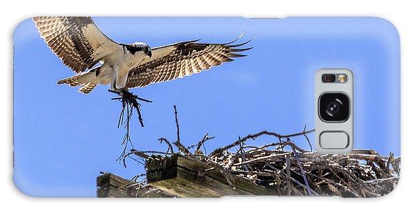 Osprey Nest Building Galaxy Case
