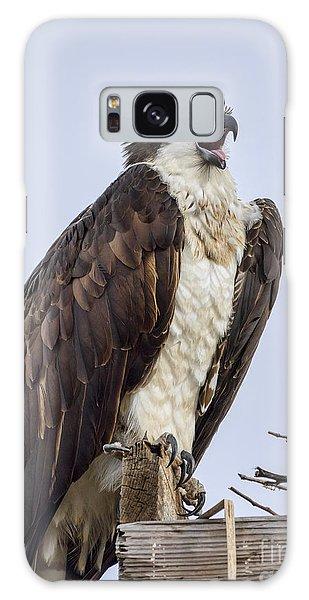 Osprey On Its Perch Galaxy Case by Eddie Yerkish