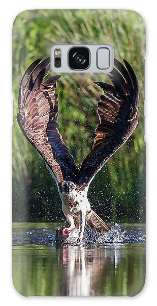 Osprey Galaxy Case - Osprey - Strike by Pat Speirs