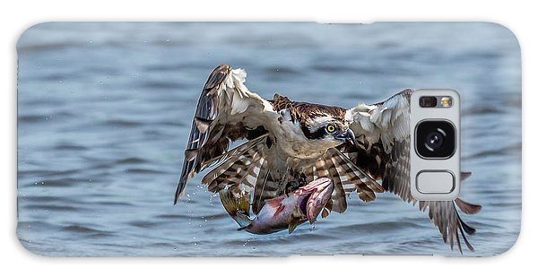 Galaxy Case featuring the photograph Osprey With Catch 9108 by Donald Brown