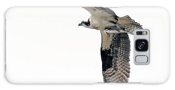Osprey With Fish Galaxy Case by Stephen  Johnson