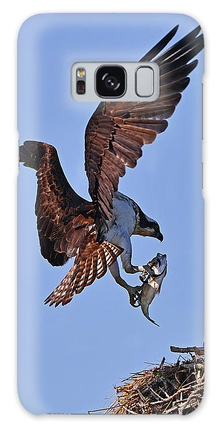 Galaxy Case featuring the photograph Osprey With Fresh Catch by Ken Stampfer