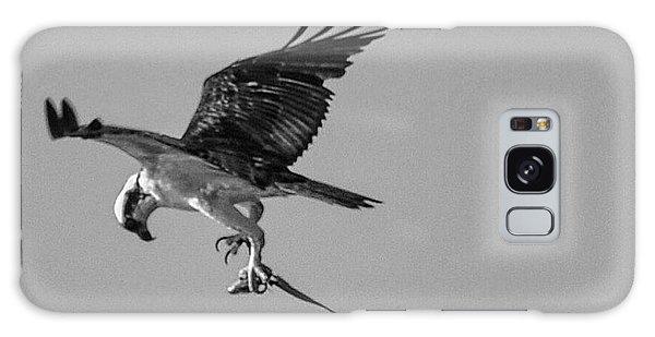 Osprey With Prey Galaxy Case