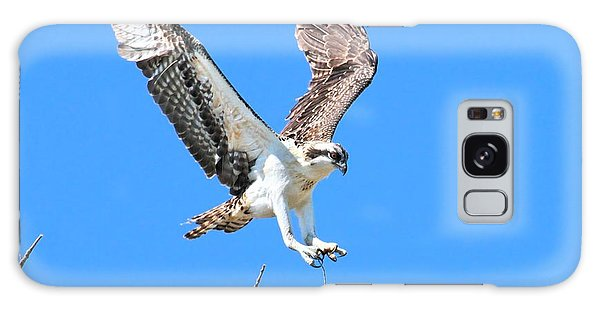 Ospreys Learning To Fly Galaxy Case by Debbie Stahre
