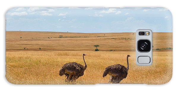 Ostrich Galaxy Case