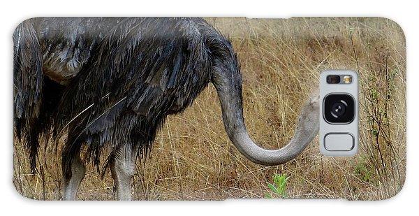 Exploramum Galaxy Case - Ostrich In The Grass 2 by Exploramum Exploramum