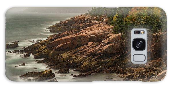 Otter Cliffs Galaxy Case