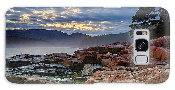 Otter Galaxy Case - Otter Cove In The Mist by Rick Berk