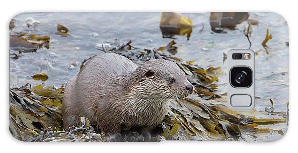 Otter On Seaweed Galaxy Case