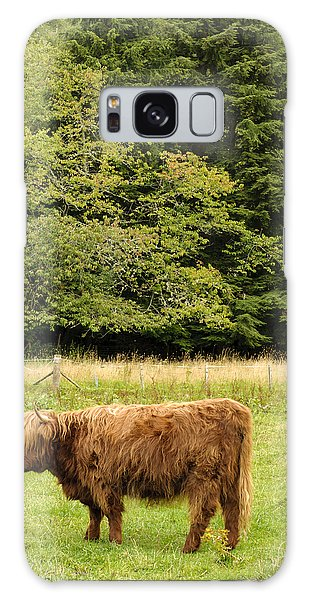 Galaxy Case featuring the photograph Out To Pasture by Christi Kraft
