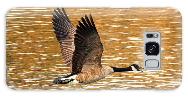 Canada Goose Galaxy Case - Over Golden Waters by Mike Dawson