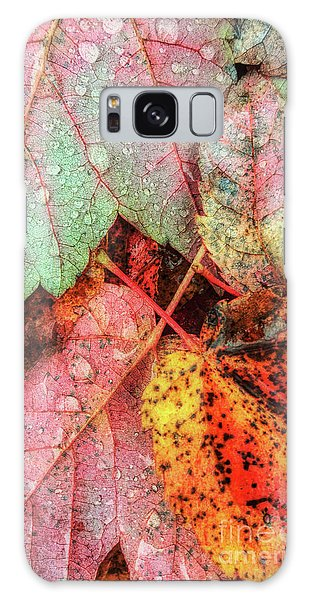 Overnight Rain Leaves Galaxy Case by Todd Breitling