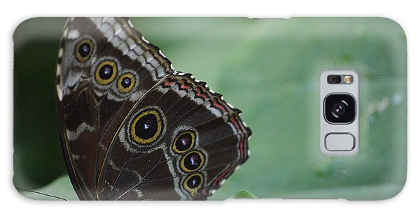 Owl Butterfly Galaxy Case