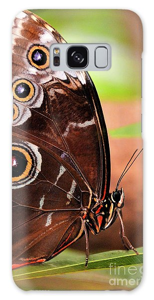 Owl Butterfly Portrait Galaxy Case