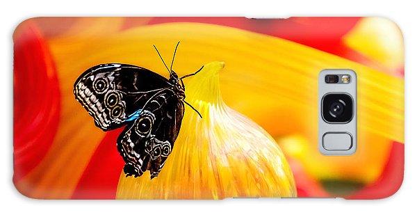 Monarch Galaxy Case - Owl Eye Butterfly On Colorful Glass by Tom Mc Nemar