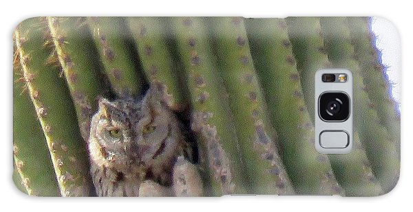 Owl In Cactus Burrow Galaxy Case