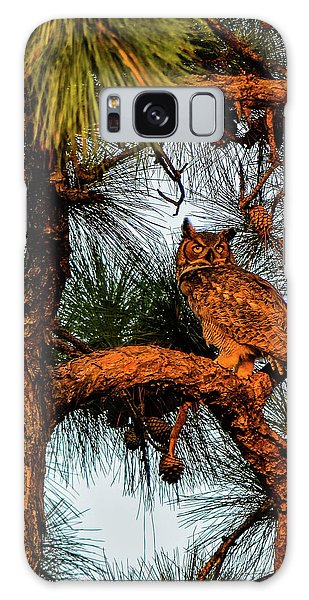 Owl In The Very Last Sunset Light Galaxy Case