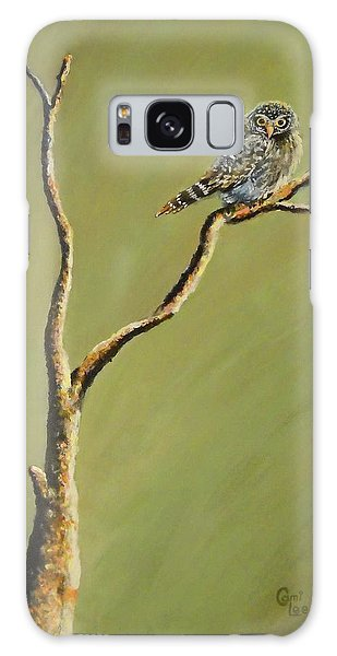 Owl On A Branch Galaxy Case