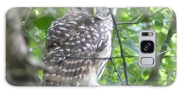 Owl On A Limb Galaxy Case by Donald C Morgan