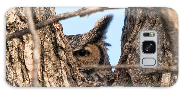 Owl Peek Galaxy Case by Steve Stuller