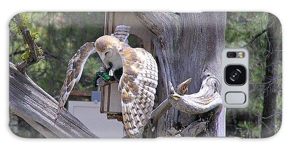 Owl Takeoff Galaxy Case