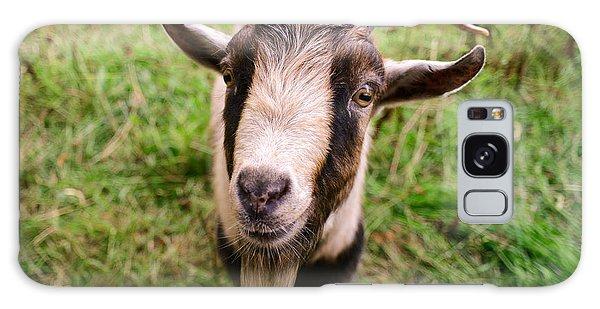 Oxford Goat Galaxy Case