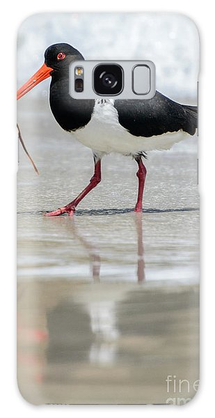 Oystercatcher 03 Galaxy Case