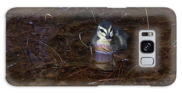 Galaxy Case featuring the photograph Pacific Black Duckling by Miroslava Jurcik