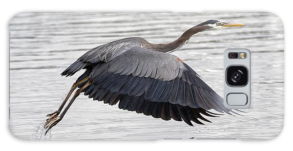 Pacific Great Blue Heron On Lift Off Galaxy Case